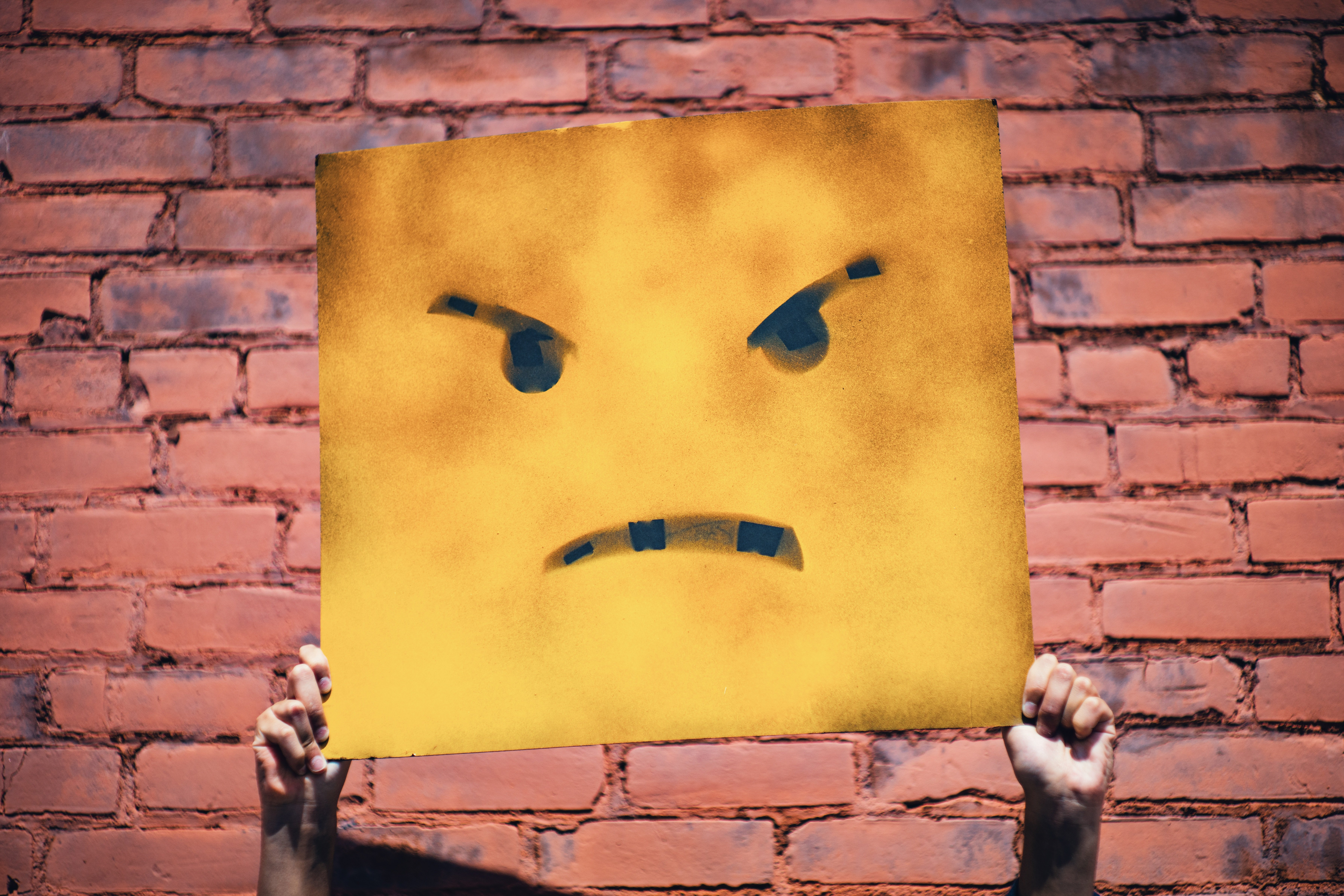 a picture of someone holding up a sign that has an angry or frustrated face on it